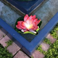Lotus solar light