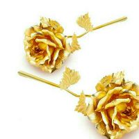 24k gold Rose plated only