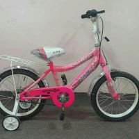 BICYCLE 16