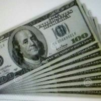 Looking for a Financer for a profitfull