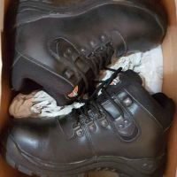safety shoes dickies