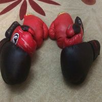 boxing gloves (3)