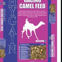 Camels feed sale