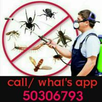 pest control/ bed bugs control service 5