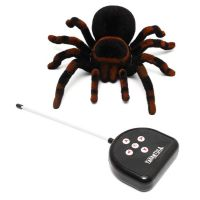 Spider with remote
