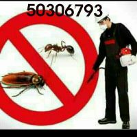 pest/ bed bugs control 50306793