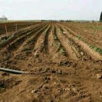 Land preparation for agriculture