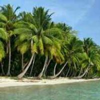 Tour to Andaman & Nicobar islands