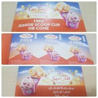 for sale 366 coupons from baskin robbins
