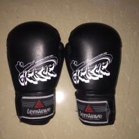 Boxing gloves new