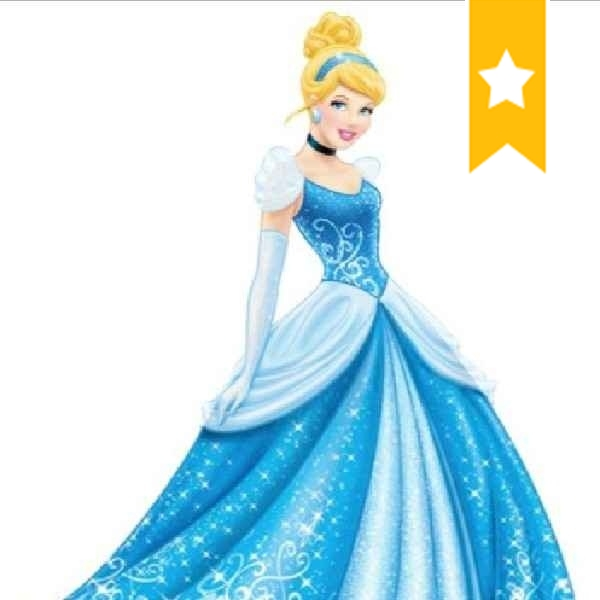 Cinderella for cleaning and hospitalty