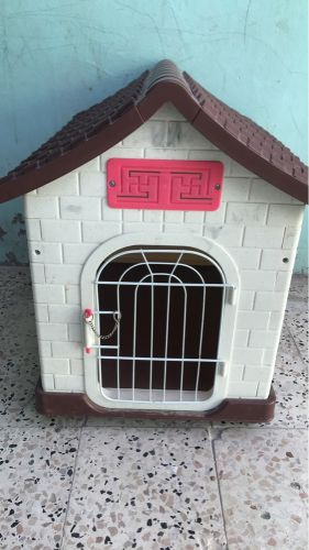 Home for cat ordog
