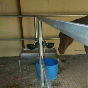 Horse water system