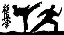 private lessons in kyokushin karate