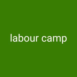 approved labour camp for rent