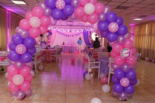 Party Organizer