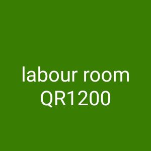 for rent labour rooms