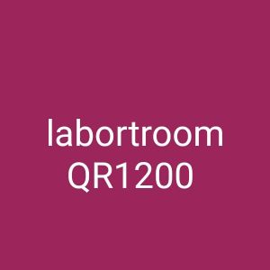 for rent labour rooms at industrial area