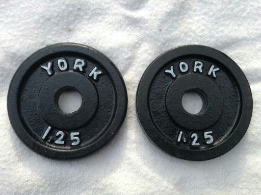 10 lb dumbbel & 2 weight plates for sale