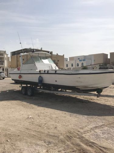 Gulf Craft 31 ft