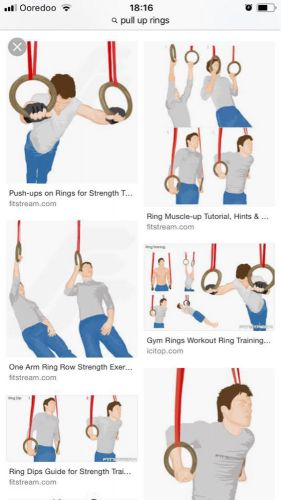 Gym ring rows