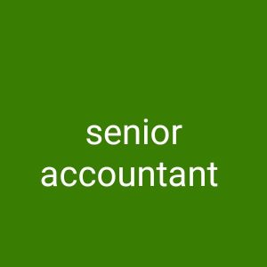 senior accountant and internal auditor