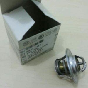 Thermostat for VW Golf