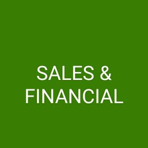Sales & Financial Analyst