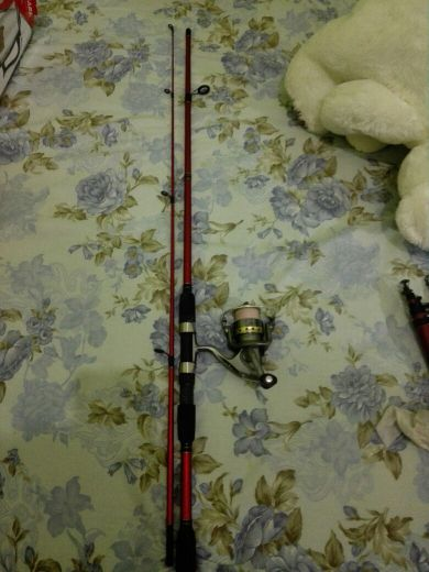 Fishing rods with motors for sale