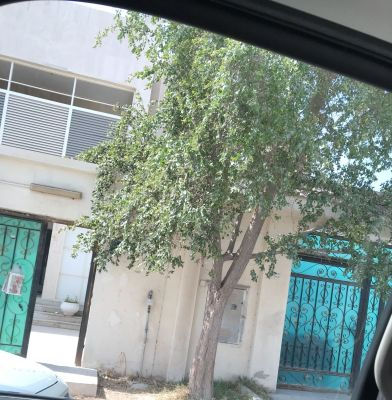 For sale villa in thumama