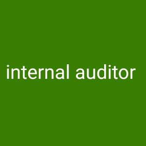 chief accountant and internal auditor