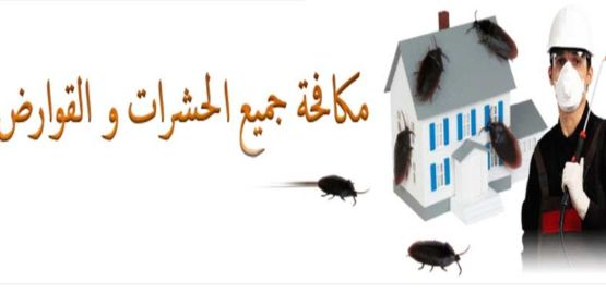 eliminate house and gardiens insect