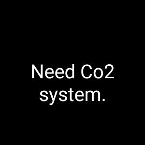need a Co2 system for planted aquarium