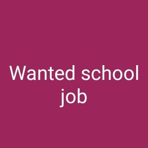 Wanted school job