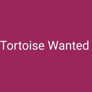 Tortoise Wanted