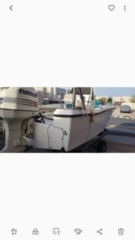 20.5ft Boat 250hp Evinrude
