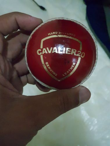 Cavalier cricket hard ball