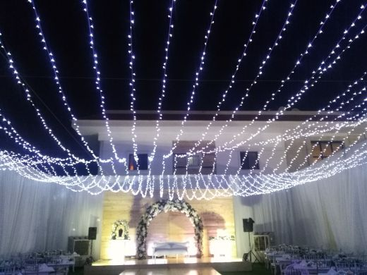 wedding and party lights