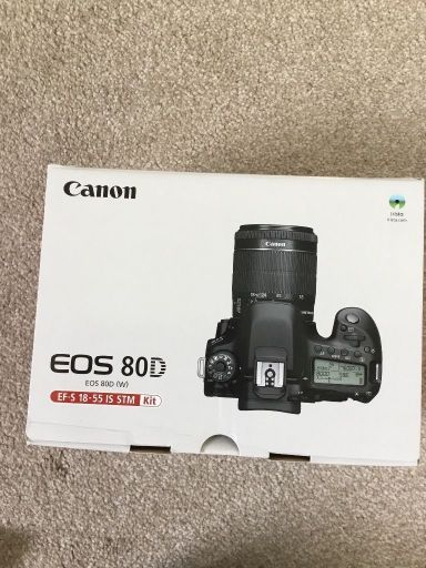 canon 80d with 18-55