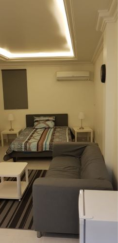 Fully furnished studio