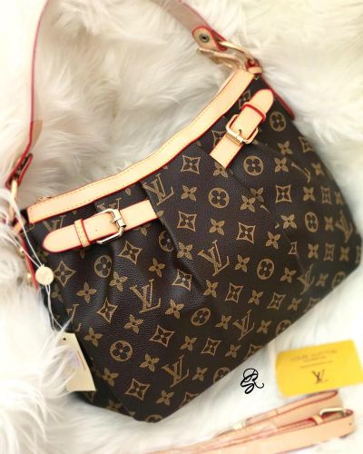 Louis Vuitton Hobo