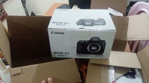 New Canon 6D Mark II+24-105 f4L IS II
