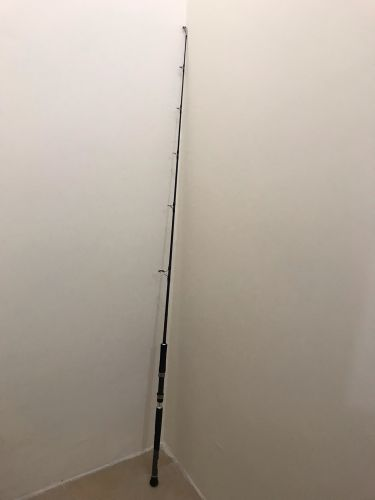 قصبة Daiwa jigging Rod