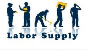 Labour Supply From Pakistan