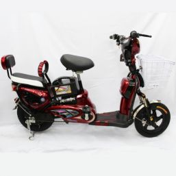 SCOOTER BIKE 48V