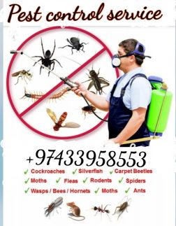 Bed bug /pest control service in Qatar