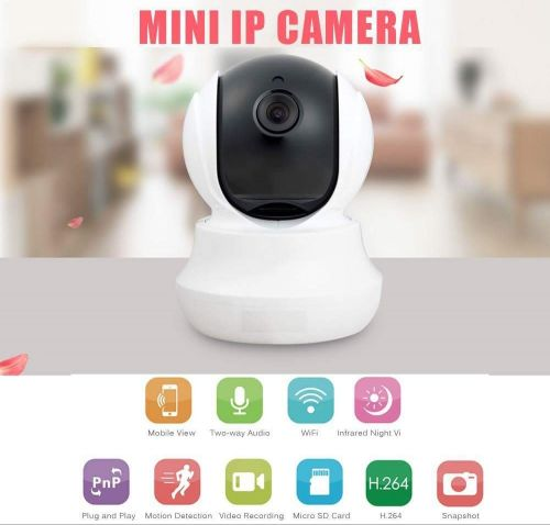 small camera with delivery