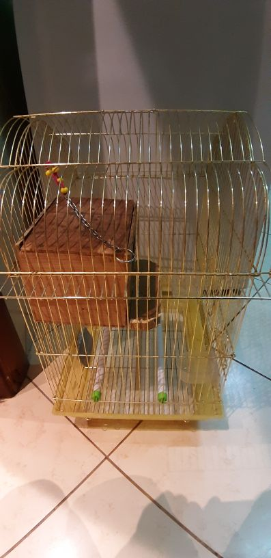 cage for sale with small crack in back