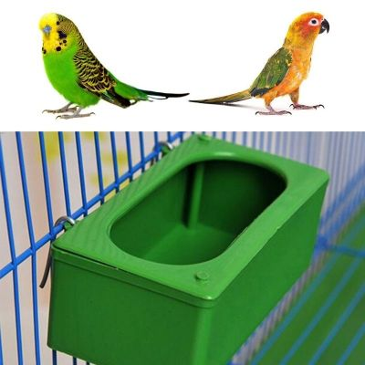 Parrot Food Water Cup