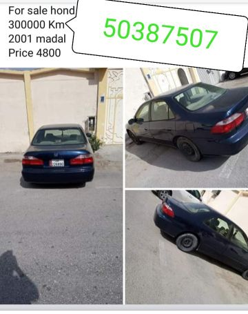 for sale 50387507